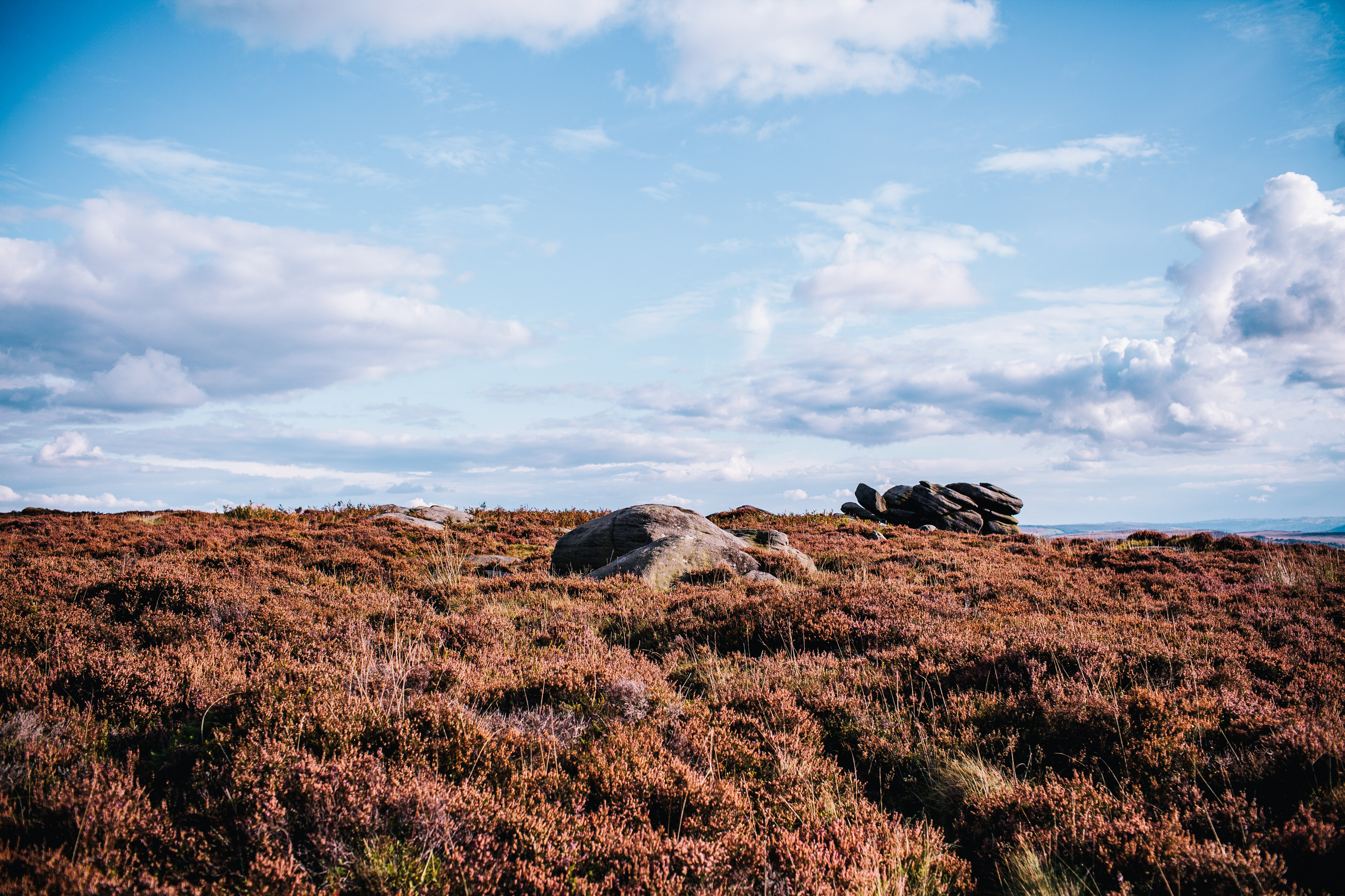 Heather at the Peak District