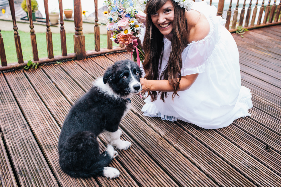 collie puppy being cuddled by bride at festival wedding