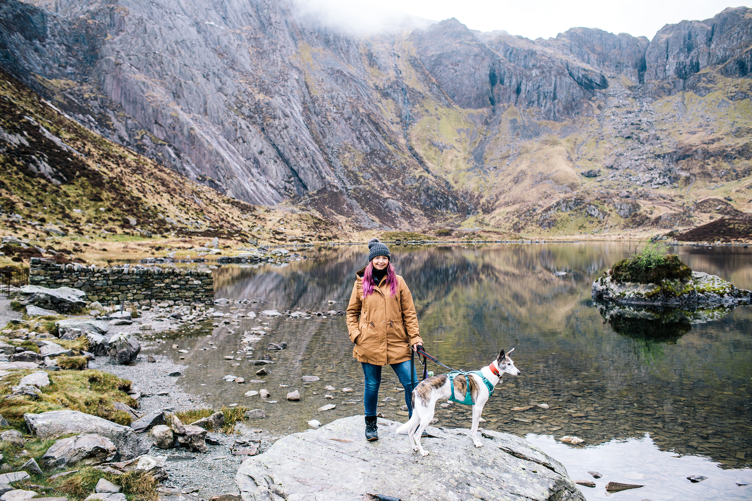 wedding photographer standing on top of snowdonia with her dog called dax